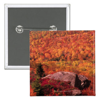 Pisgah National Forest from Blue Ridge Parkway , 2 Inch Square Button