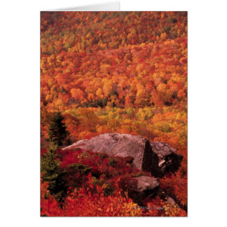 Pisgah National Forest from Blue Ridge Parkway , Greeting Card