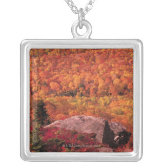 Pisgah National Forest from Blue Ridge Parkway , Square Pendant Necklace