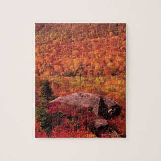 Pisgah National Forest from Blue Ridge Parkway , Puzzle