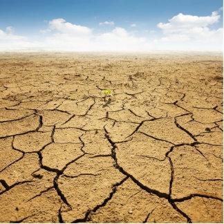 Piso agrietado del desierto imán fotoescultura