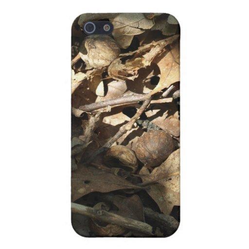 Piso del bosque iPhone 5 carcasas