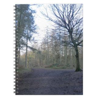Pista a través del bosque de Delaware en Cheshire Libros De Apuntes Con Espiral