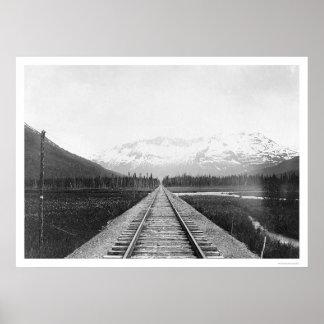 Pista de ferrocarril de la península de Kenai 1918 Póster