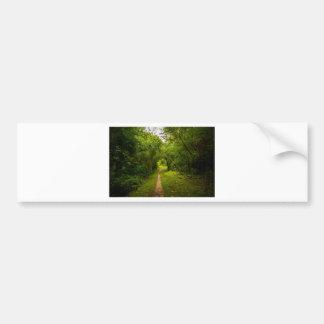 Pista de senderismo a través de las maderas pegatina para auto