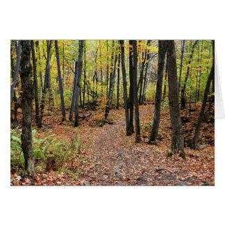 Pista de senderismo en otoño, parque de Gatineau,  Tarjetón