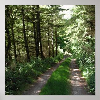 Pista de tierra a través de árboles póster