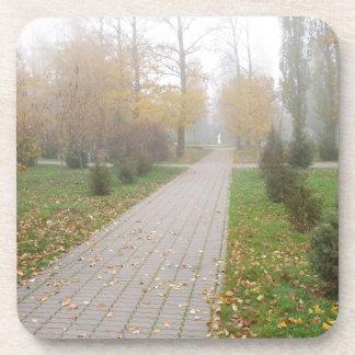 Pista en parque del otoño posavaso