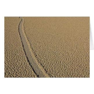 Pista Playa Tarjeton