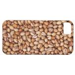 Pistachio Nuts iPhone 5 Case