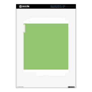 Pistachio iPad 2 Decal