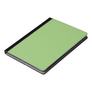 Pistachio Solid Color iPad Case