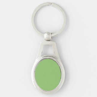 Pistachio Solid Color Silver-Colored Oval Metal Keychain