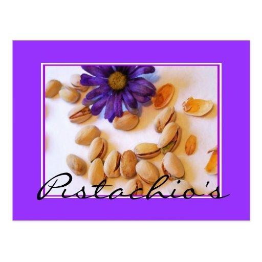 pistachio's Postcard