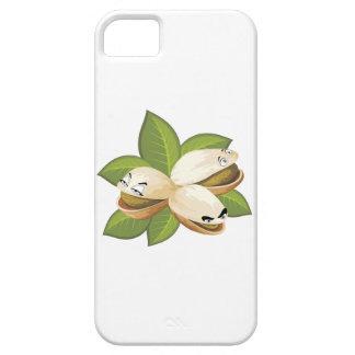 pistacho iPhone 5 cárcasa