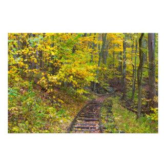 Pistas de ferrocarril viejas, ruta verde azul de impresión fotográfica
