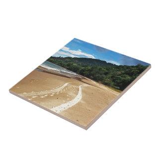 pistas de la playa azulejo cuadrado pequeño