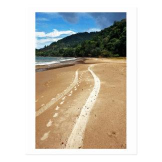 pistas de la playa postal