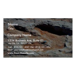 Pistas del dinosaurio al norte de la asta de bande tarjetas de visita
