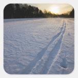Pistas del esquí en el coto de la granja de pegatina cuadrada