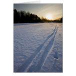 Pistas del esquí en el coto de la granja de Willow Tarjeta
