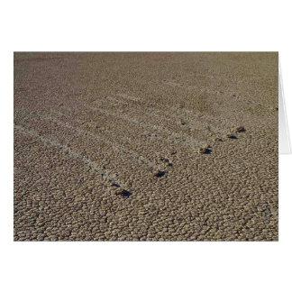 Pistas del fango de Playa de la pista Tarjetas