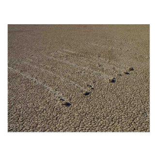 Pistas del fango de Playa de la pista Tarjeta Postal