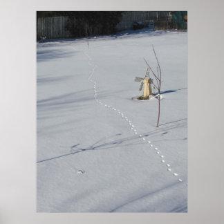 Pistas en la impresión del ~ de la nieve póster