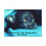 Pistol Packing Lady Paisley Marie Gallery Wrap Canvas