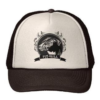 PIT BULL 3 MESH HATS