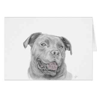 Pit Bull Art Drawing Card