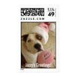 Pit bull as Mrs. Claus Stamps
