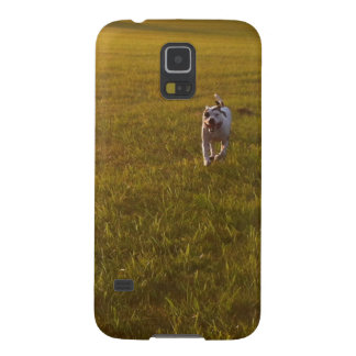 Pit Bull Galaxy S5 Cover