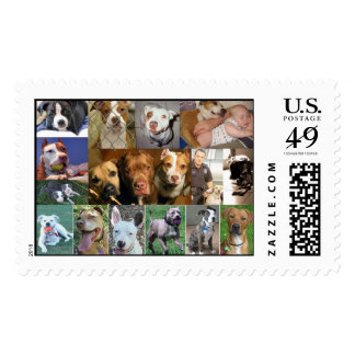 Pit Bull Collage Stamp