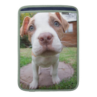 pit bull dog brown nose close sleeve for MacBook air