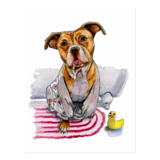 Pit Bull Dog in Bathrobe Watercolor Painting Postcard