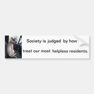 pit bull dog protect animal rights cherish bumper stickers