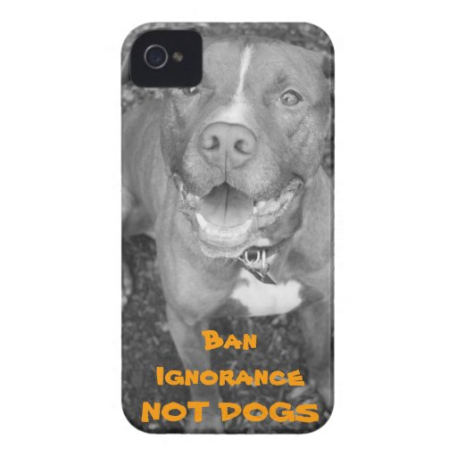 Pit Bull iPhone Case iPhone 4 Covers