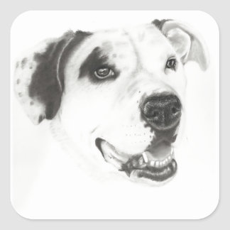 Pit bull love square stickers