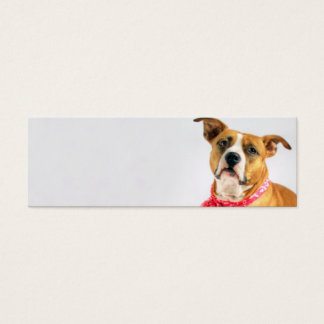 Pit Bull Puppy Love in Pink XOXO Mini Business Card