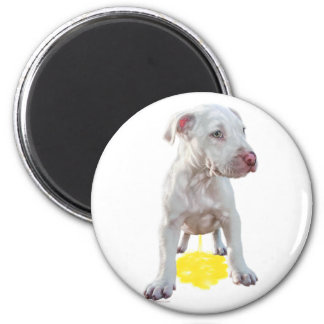Pit Bull Puppy Piddles OOPS Refrigerator Magnets