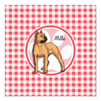 Pit Bull; Red and White Gingham Announcement