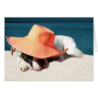 Pit Bull Rescue Dog Relaxing by the Sea Card