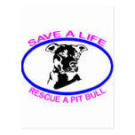 PIT BULL SAVE A LIFE POST CARDS