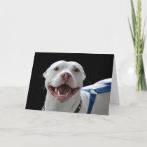 ya doggy smiles fuuny cuz kinda human