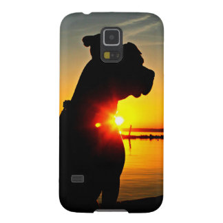Pit Bull Sunrise Galaxy S5 Cover