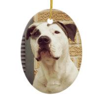 Pit Bull T-Bone Ceramic Ornament