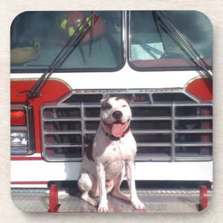 Pit Bull T-Bone Fire House Dog Drink Coaster