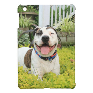 Pit Bull T-Bone iPad Mini Covers