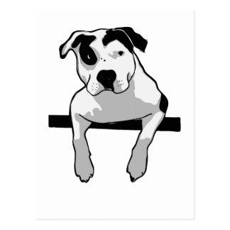 Pit Bull T-Bone Postcard